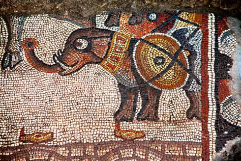 7. Area 3000, a battle elephant in the Late Roman mosaic, looking west.