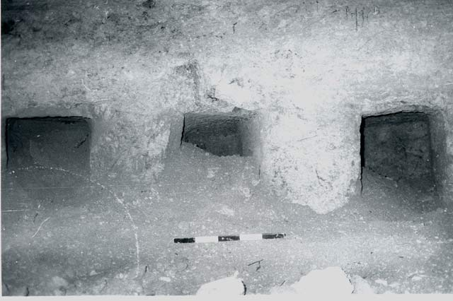 2. The three <i>kokhim</i> in the southeastern wall of the burial cave, looking southeast.
