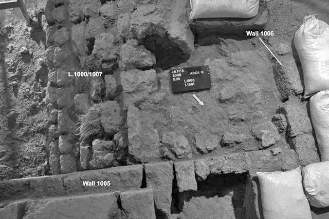 3. Probe 1 at beginning of excavation; Probe 2 at bottom behind southern face of W1005, looking southwest.