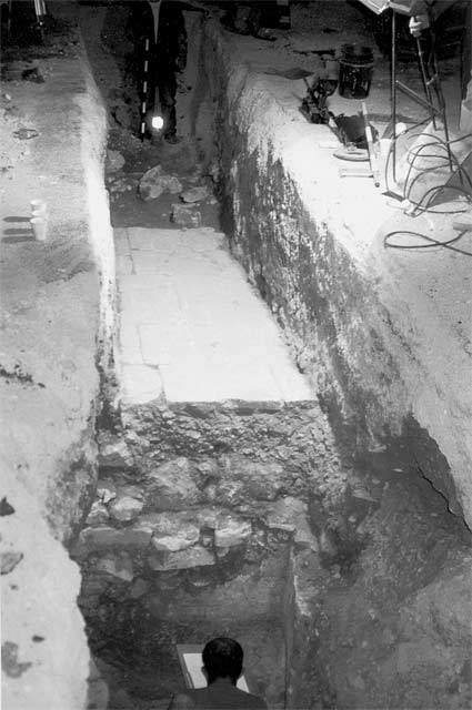 3. The excavation area, looking north.