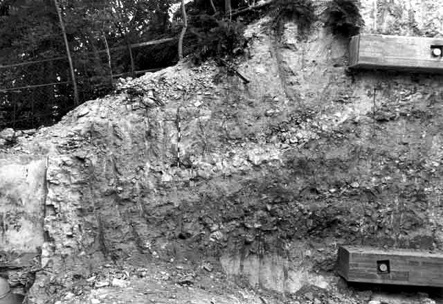 4. North wall of trench, looking north.