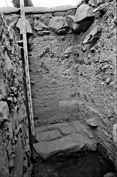 7. Pavement 221 and Wall 205 (left), looking south; earthen floors visible in southern section.