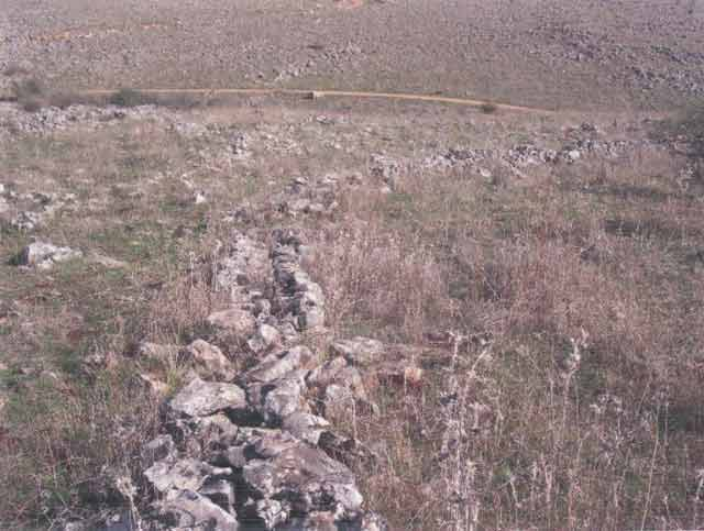 4. Wall 24, looking northeast.
