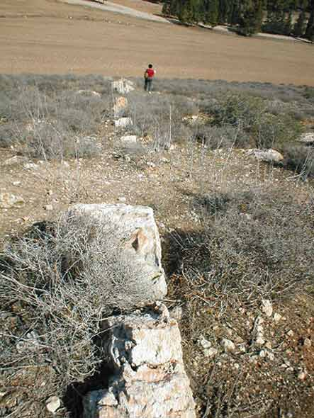 2. Site 4, field wall, looking northwest.