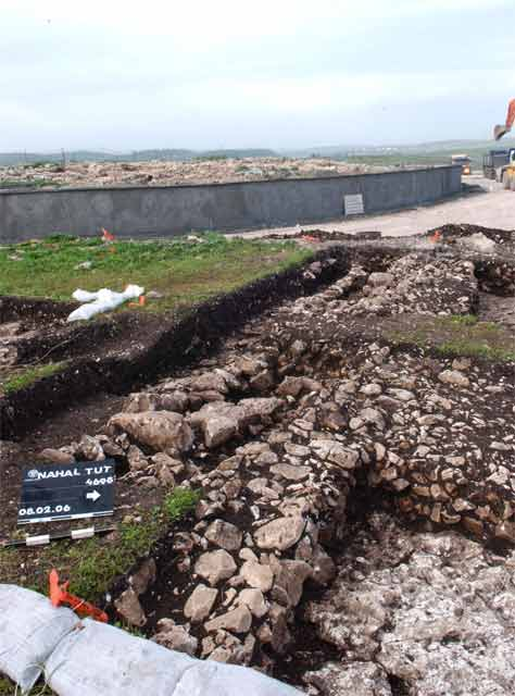 2. The excavation area, looking west.
