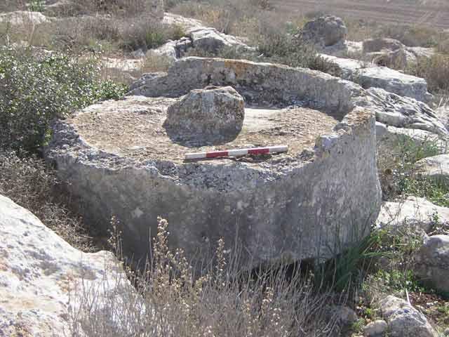 5. An olive press crushing basin (No. 33), looking east.