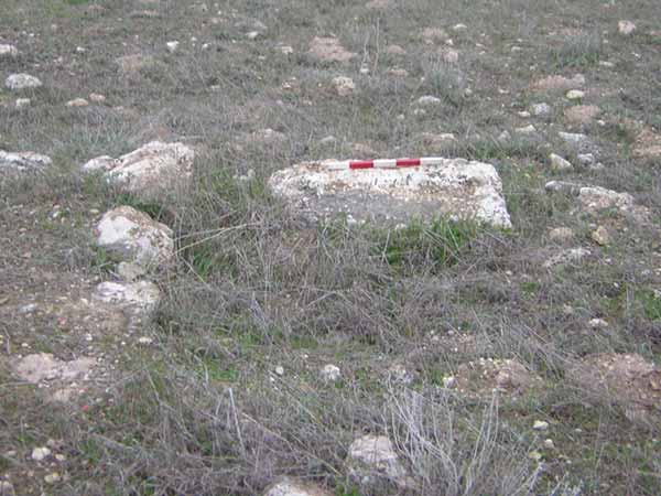 8. Building 220, an in situ threshold stone, looking west.