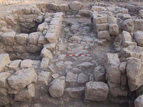 4. General view of excavation, looking south.