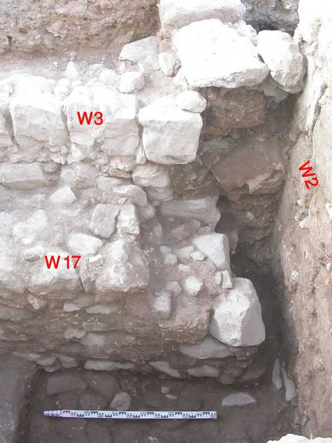 9. Foundation trench (Locus 7), looking south.
