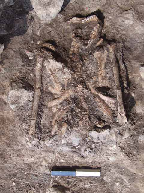 10. Human burial, looking southwest.