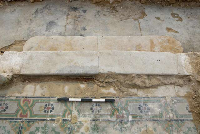 9. The pavement in the vestibule, looking south.